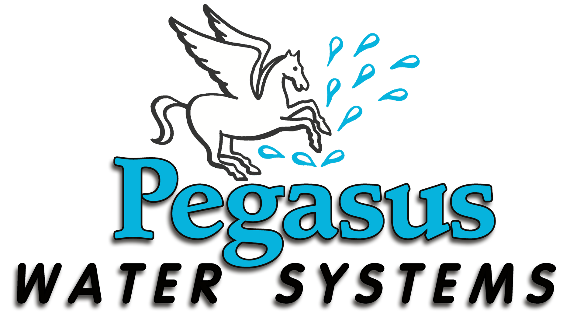 Pegasus Water Systems Logo